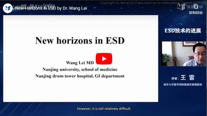 New Horizons In ESD By Dr. Wang Lei